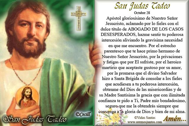 San Judas Tadeo, Fundación Medjugorje 2000